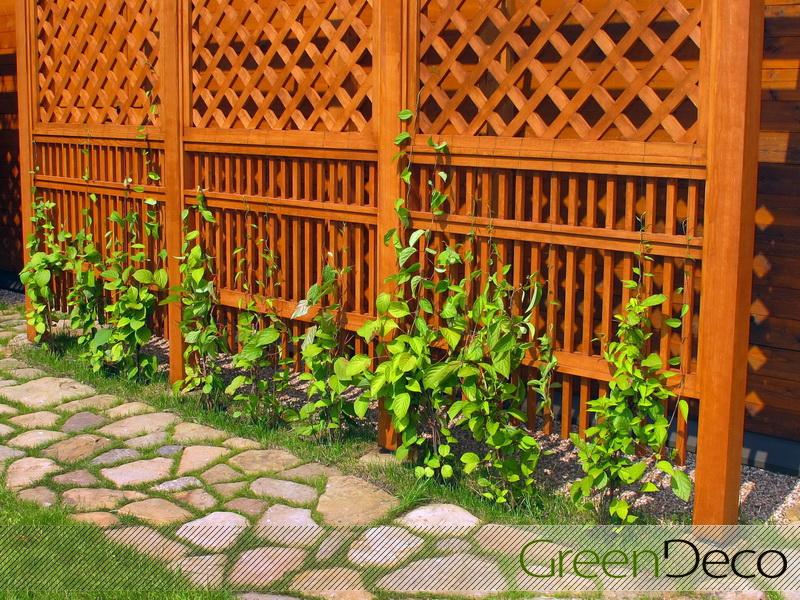Как сделать забор из шпалеры для винограда